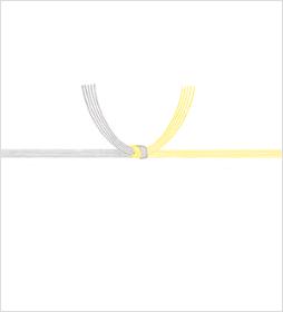 黄白水引(黄水引)
